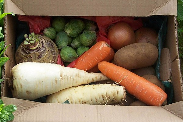 Veg Box for 2 People