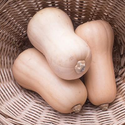 butternut sqaush