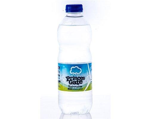 princes gate water